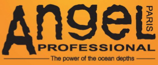 Angel Professional - salon hair products available at Headstart Total Body